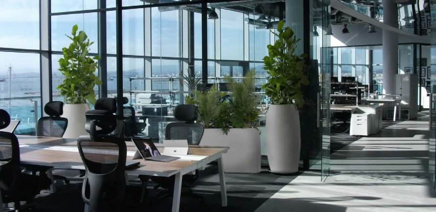 eToro Looks To Open Subsidiary in Gibraltar Image